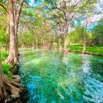 15 Best Swimming Holes In Austin (2021 Edition)